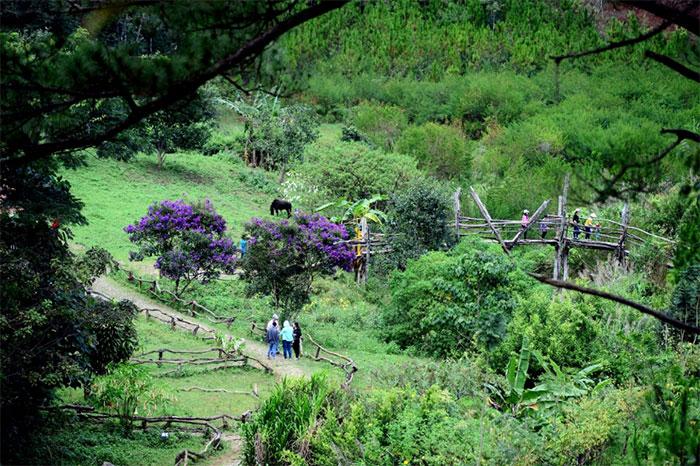 Cảnh đẹp như tranh vẽ tại làng Cù Lần